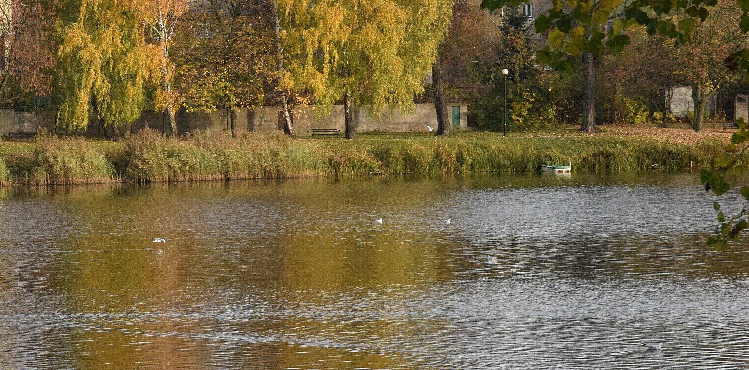 Mogilno - Mogilno. Zwłoki kobiety w jeziorze